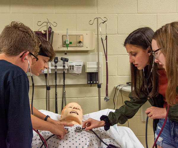 Visitors from Milton listen to SimMan's lungs and heart.