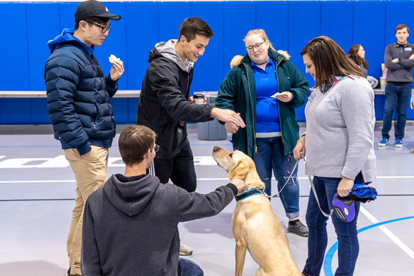 Rocky Mountain, a Labrador retriever owned by Lizze R. Winters (right), first year student transition coordinator, attracts an appreciative crowd.